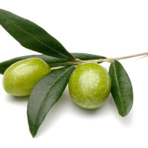 Olivolja 100 ml