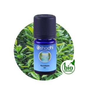 Ravintsara organic 10 ml